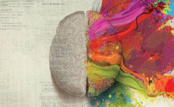 50 حقيقة علمية و طبية مدهشة عن مخ الإنسان